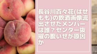 hasegawamomoka[1]