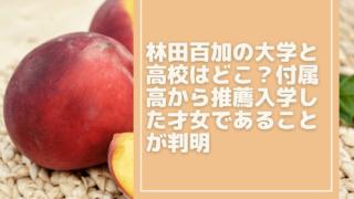 hayashida-moka[1]